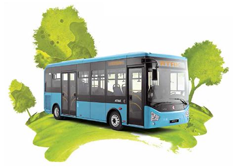 bus-foto